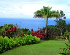 A real, live Garden of Eden - Maui, Hawaii       @Kristin :: Teal White Garden Hanagan#monogramsvacation