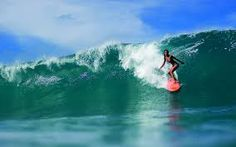 surfing girls - Hledat Googlem