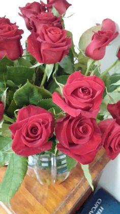Rose center Rose, Flowers, Plants, Pink, Roses, Flora, Plant, Royal Icing Flowers, Flower
