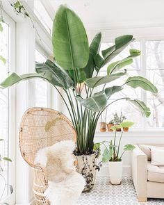 Favorite Space: dreamy boho modern home via Emily Billings