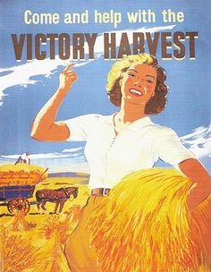 victory harvest WWII Victory gardens were popular with US families to help war effort Vintage Ads, Vintage Posters, Vintage Food, Vintage Purses, Vintage Images, Ww2 Posters, Political Posters, Political Art, Dig For Victory