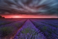 VALENSOLE by Lluis de Haro Sanchez on 500px