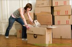 With the help of the moving services such as man and van Sutton, you can get done with your moving troubles without facing any problem. Commercial Cleaning Services, Cleaning Companies, House Cleaning Services, Cleaning Business, Removal Companies, Office Cleaning, Packing Services, Moving Services, Removal Boxes