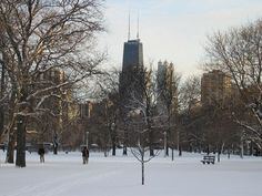 Lincoln Park = <3