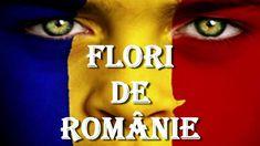 Flori de Românie - karaoke Karaoke, Try Again, Music, Movies, Movie Posters, Musica, Musik, Films, Film Poster