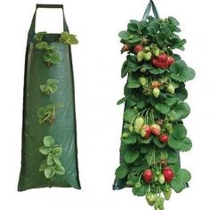 Durable Hanging Strawberry Growbag Planter Bag Patio Balcony Kitchen in Garden & Patio, Plant Care, Soil & Accessories, Baskets, Pots & Window Boxes | eBay