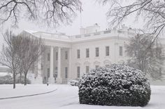 The White House is seen under first winter snowfall in Washington, January 6, 2015.