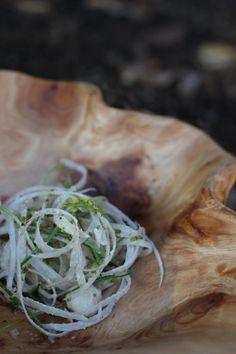 Indian summer :: the earth :: burdock sunchoke onion 12/09