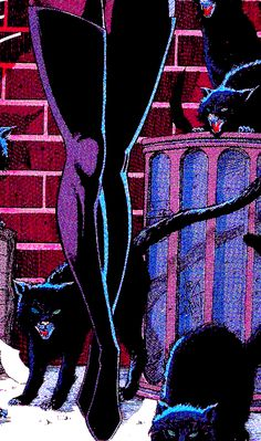 Catwoman by Jim Balent Catwoman Comic, Catwoman Cosplay, Batman And Catwoman, Batman 1, Bd Art, Catwoman Selina Kyle, Univers Dc, Japon Illustration, Comics Girls