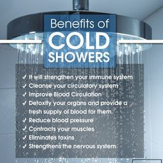 Cold showers or alternating between warm and cold has been shown to have great health benefits. This article will show you how to take cold showers Cold Bath Benefits, Benefits Of Cold Showers, Taking Cold Showers, Warm Showers, Cold Water Shower, Improve Blood Circulation, Circulatory System, Fitness Nutrition, Fitness Tips