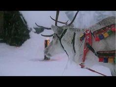 Aufbruch des Weihnachtsmanns (Lappland, Finnland)
