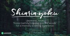 "Shinrin-yoku is a Japanese word that means ""forest bathing""—the practice of going into the woods for a mentally soothing experience."