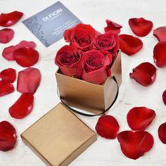 Mini red roses box by DIFIORI