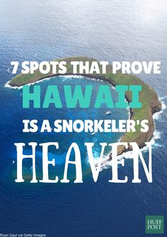 Planning a tropical vacation? Here's where to find the best snorkeling spots in Hawaii