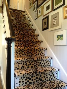 Erin Gates Design, leopard stairs! Yes!