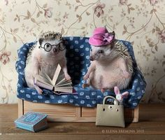 family by Elena Eremina