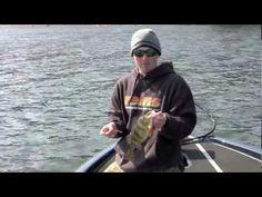 Jumbo Perch fishing with micro swimbaits - YouTube