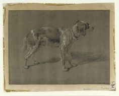 Adriaen van de Velde, Study of a dog. Fitzwilliam Museum, University of Cambridge.