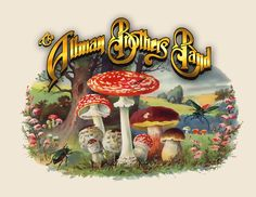 The Allman Brothers Band -