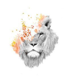 Lion/flowers drawing