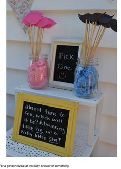 Mustache or pink lips?  This is a fun way for baby shower guests to make their pick before a gender reveal!