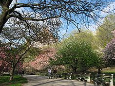 Riverside Park is Manhattan's most spectacular waterfront park, and one of only eight officially designated scenic landmarks in New York City. The park stretches four miles along the Hudson River