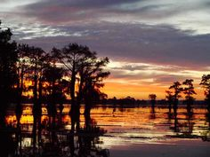 Sunrise on Caddo Lake, Uncertain TEXAS.....a new favorite place