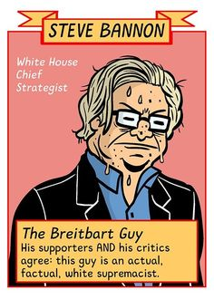 Steve Bannon Chief Strategist and White Supremacist is who is running America folks. You really did a great job on this one...