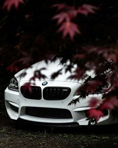 Just a small glimpse of the amazing. The BMW Coup Bmw M6 Coupe, Suv Cars, Sport Cars, Bmw X5, Audi Q 5, Gt R, Bmw M Power, Bmw Wallpapers, Best Suv