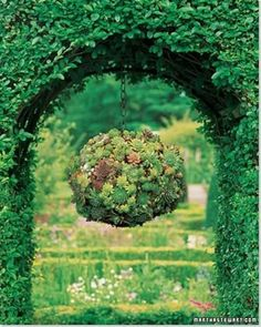 Gorgeous Gardening - Create Your Own Hanging Succulent Ball