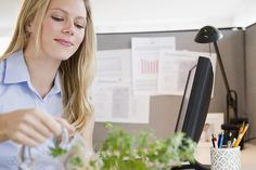 12 Ways  To Increase Office Success With Feng Shui: How To Feng Shui Your Office Cubicle