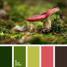 The color palette №2291 -- Bright, summer palette. The natural combination of colors. Shades of green, earth colors and are vitality, beauty and vitality. The highlight of the composition - a bright pink color. With it you can create eye-catching glamorous accents. Wonderful range for use in almost any interior space. Such paint is especially suitable for the decoration of the kitchen, living room, bedroom, dining room.