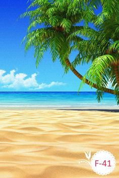 Tropical beach coconut tree illustration iphone 6 iphone 8 plus wallpaper. Strand Wallpaper, Beach Wallpaper, Wallpaper App, Perfect Wallpaper, Beach Images, Beach Photos, Summer Pictures, Types Of Photography, Landscape Photography