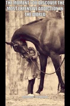 Horse love - my children will grow up with horses like i did. no doubt. All The Pretty Horses, Beautiful Horses, Animals Beautiful, Cute Animals, Horse Love, Horse Girl, Horse Quotes, Tier Fotos, Mundo Animal
