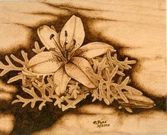Woodcarver On-Line Magazine, Pyrography News, No. 25