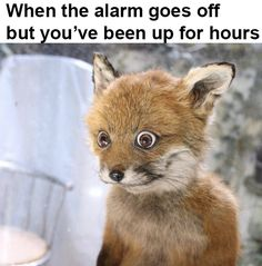 Relying on the alarm or snooze button. | 18 Things That Sound Fake To Anyone Who's Type A