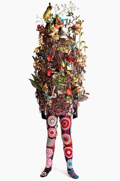 I need a guide: nick cave # update