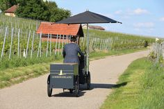 Wine Country, Street Food, Biking, Countryside, Baby Strollers, Vineyard, Beverages, City, Pictures
