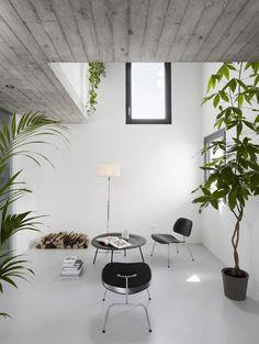 techo y hueco... acabando en espacio abierto, cristal y jardin.