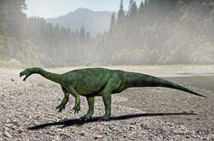 Аардоникс (лат. Aardonyx; букв. «коготь из земли») — род растительноядного динозавра подотряда завроподоморфов, живших в раннем юрском периоде (около 195