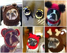 Crochet Dog Hats!