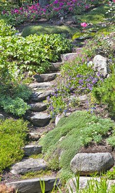 Steingarten an einer Hanglage: Hier bieten sich Treppen aus Bruchsteinen an