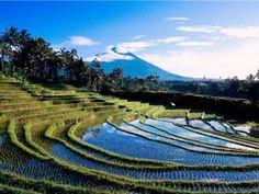 Bali. More than beaches in paradise.