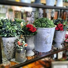 Various Rustic Zinc Containers And Small Urns | Products | Verandah - Outdoor And Indoor Decor