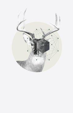 Graphic Design By: Jaime Romero | Square Inch Design Blog