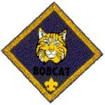 Bobcat is the joining rank for Cub Scouts. New Cub Scouts earn Bobcat before any other rank, no matter what age they are when they join. Find helps for the Bobcat program on this page. Cub Scouts Wolf, Tiger Scouts, Girl Scouts, Scout Games, Cub Scout Activities, Cub Scout Badges, Activity Day Girls, Activity Days, Pack Meeting