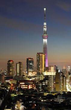 <p>Tokyo Sky Tree opened in May 2012 as the world's tallest 'free-standing tower' at 634m. Its silvery exterior of steel mesh morphs from a...