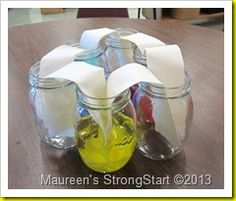 Watching color move.  Check out this fascinating yet simple experiment!