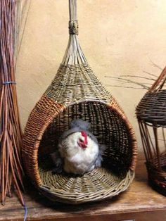 how to make a bird house (or chicken house, or dog house. Plant Basket, Bamboo Basket, Paper Weaving, Weaving Art, Willow Weaving, Basket Weaving, Big Basket, Basket Crafts, Bird House Kits