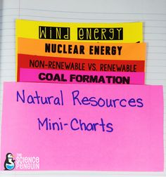 Natural Resources Mini-Charts for interactive science notebooks
